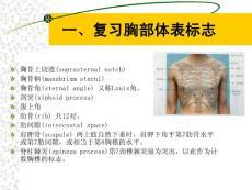 [医学]胸部体格检查