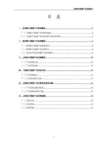 上海医疗器械产业发展报告[20091218]