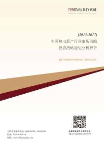 2013-2017年中国热电联产行业市场前瞻与投资战略规划分析报告