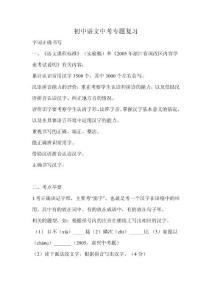 初中语文中考专题复习