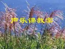 【艺术课件】声乐课教案12