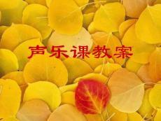 【艺术课件】声乐课教案13