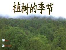 藏族介绍ppt