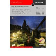 野村证券 2010年亚洲钢铁行业深度研究报告