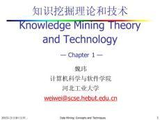 数据挖掘理论与技术