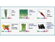 英文单词图文-日常生活中常见蔬菜英文名