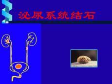 版肾结石诊疗指南(精)