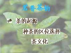 【大学课件】茗香茶韵