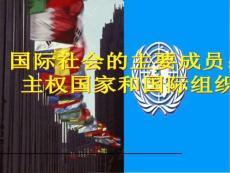 国际社会的主要成员: 主权国家和国际组织 课件