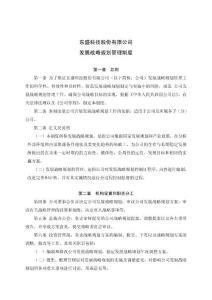东盛科技股份有限公司 发展战略规划管理制度