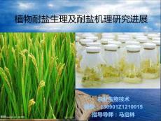 植物耐盐生理及耐盐机理研究进展.