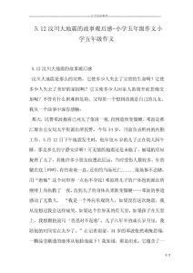 5.12汶川大地震的故事观后..