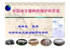 中国地方猪种的保护和开发