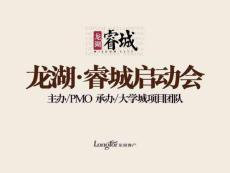 最新房地产策划提案大全-重庆龙湖睿城项目全案策划报告