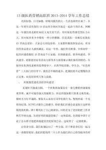13级医药营销高职班2013-2..