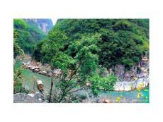 长江三峡原貌欣赏4