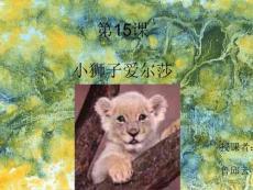 《小狮子爱尔莎》课件