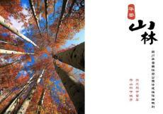 四川用地4.3公顷历史公园设计方案文本