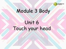 三年级英语上册 Unit6 touch your head课件 广州版