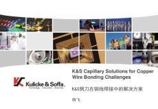 China copper seminar - Caps for Copper wire bonding