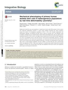 mechanical phenotyping of primary human skeletal stem cells in heterogeneous populations by real-time deformability cyto.机械基本人类骨骼干细胞表型出现异质种群的实时可变形性血细胞计