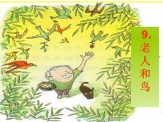 9老人和鸟讲解