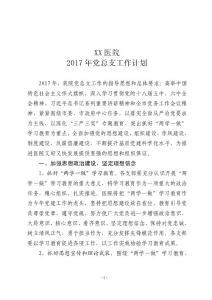 (2017年党总支工作计划)