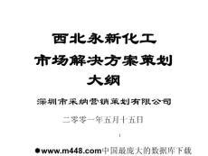 PPT-西北永新化工市场解决方案策划大纲(ppt52)-石油化工