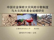 【PPT】-首都經濟貿易大學庹國柱2013年7月18日昆明