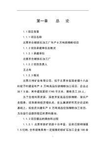 宝国老合顺铁选厂8万吨铁粉加工项目可行性研究报告