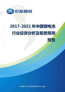 2017-2021年中国锂电池行业投资分析及前景预测报告