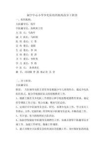 闽宁中心小学少先队组织机..