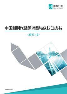 2017中国新时代蓝领消费与成长白皮书-电子版