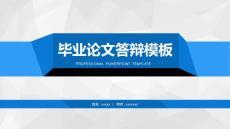 蓝色简洁通用版大学论文PP..