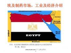 埃及制药市场,工业及经济介绍