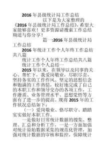 2016年县级统计局工作总结