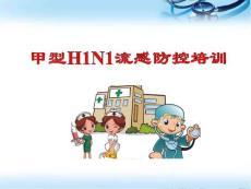 甲型h1n1流感防控培训医学ppt课件