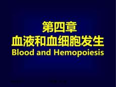 组织学及胚胎学课件血液