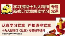 2019年党纪党规宣传教育月学习党章专题党课ppt课件