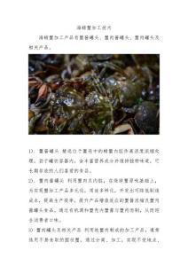 海螃蟹加工技术