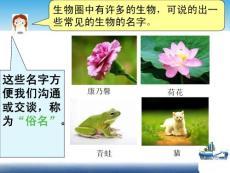 《第五单元环境中生物的多样性 第14章生物的命名和分类第1节生物的命名和分类》七年级下册初中生物课件