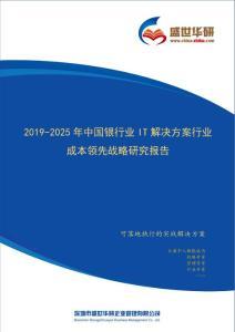 【完整版】2019-2025年中国银行业IT解决方案行业成本领先战略研究报告