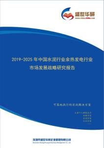 【完整版】2019-2025年中國水泥行業余熱發電行業市場發展戰略研究報告