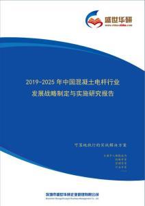 【完整版】2019-2025年中国混凝土电杆行业发展战略制定与实施研究报告