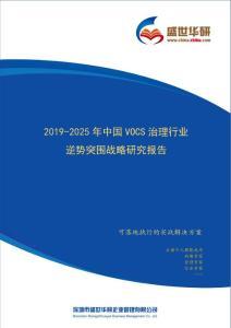 【完整版】2019-2025年中国VOCs治理行业逆势突围战略研究报告