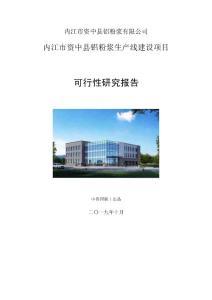 内江市资中县铝粉浆生产线建设项目可行性研究报告模版