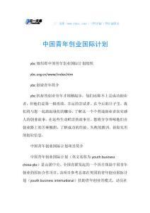 中国青年创业国际计划.doc