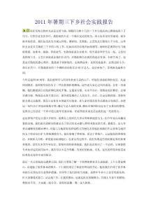2011年暑期三下乡社会实践报告(大学生寒暑假社会实践论文)