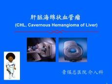 肝脏海绵状血管瘤-基础与介入ppt演示课件