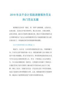 2020年關于會計實踐調查報告范文熱門范文五篇.doc